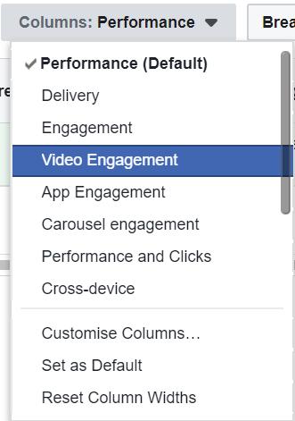 Facebook Ad Video Engagement Column