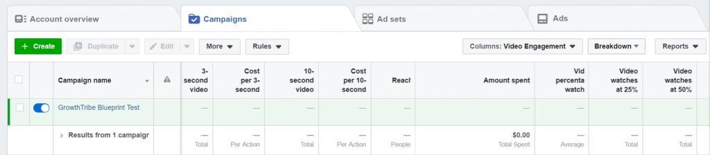 Facebook Ad Video Engagement Metrics